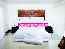 Ruột chăn đông Sông Hồng 190 x 215